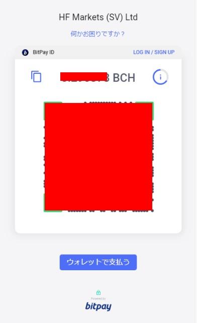 HotForexのbitpay入金画面4